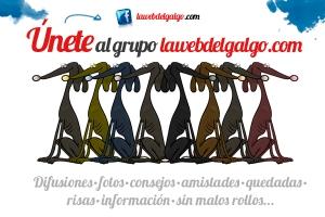 grupo facebook lawebdelgalgo.com