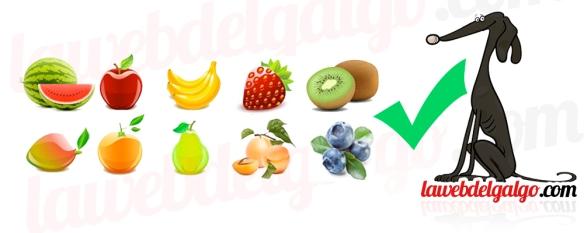 fruta saludable para nuestros perros