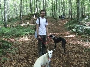 la fageda con perros